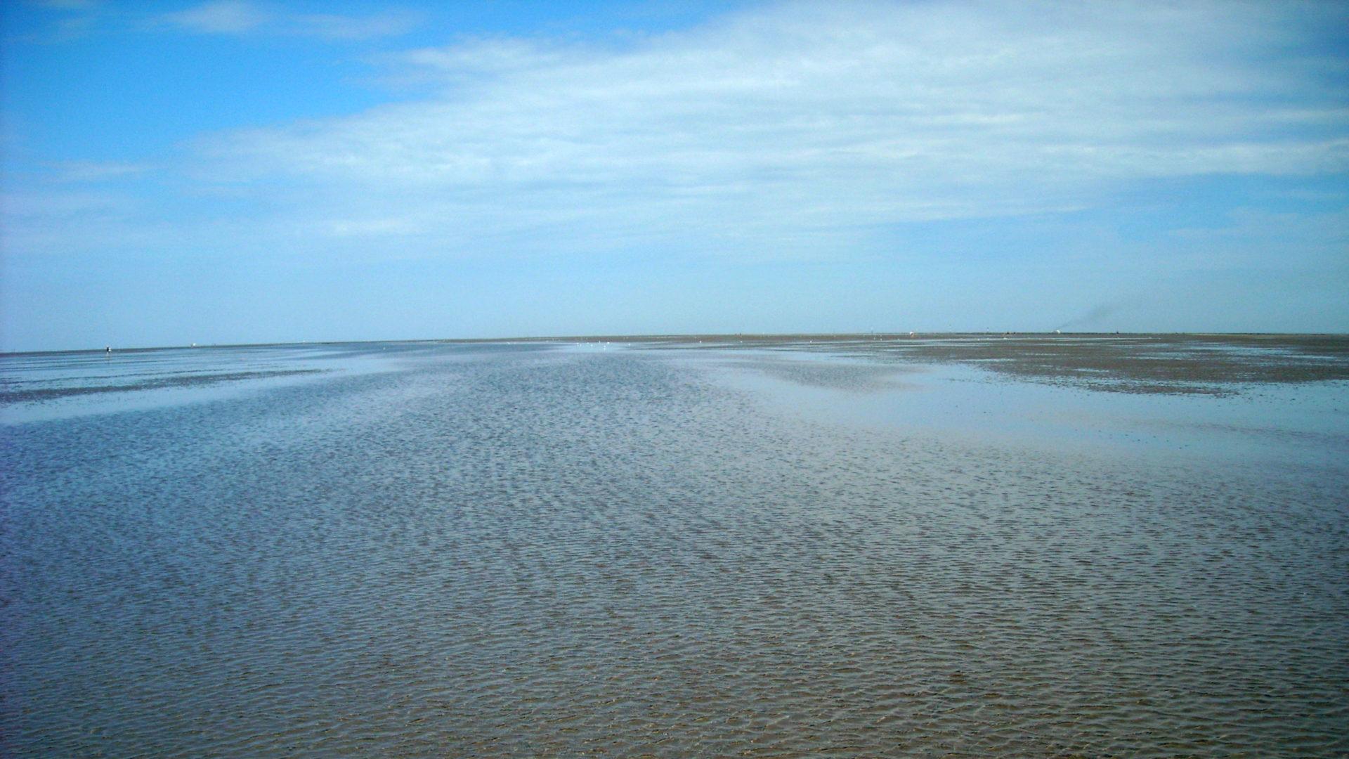 Ferienwohnung Residenz Kormoran Cuxhaven